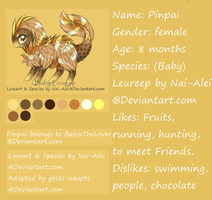 Pinpai Reference-Sheet 2014 by BalouTheLover