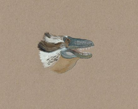 Daspletosaurus horneri sketch by Kutchicetus-Minimus