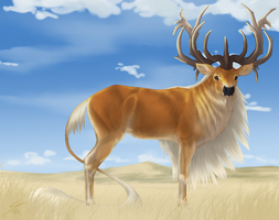 Lo'Sol | Stag | Herd Member by billygoatsgruff