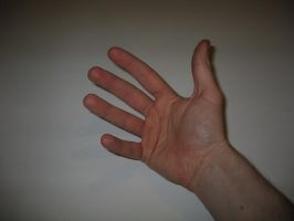 Hand Pose 5 of 22 - stock by aphasia100stock
