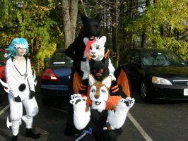 Furry totem pole by parrots4life
