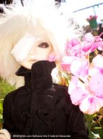 Gabriel  and pink flower 2 by MOGGGET