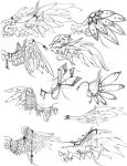 Wing Designs Round One by Jateshi