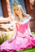 Cosplay:Princess in the Garden by Adella