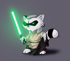 Qui-Gon Raccoon by DevilHS