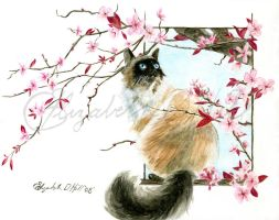Kitty Blossoms by Ihha