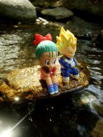 Bulma Vegeta Water 1 by ellensama