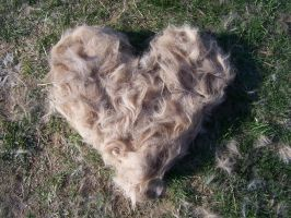 An Excess Of Horse Hair by TheMidasTouch