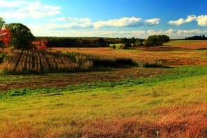 Stock: Autumn Fields in Stratham by Celem
