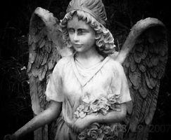 Angel. by NightingaleOnFire