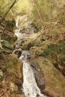 spring at the waterfall by rayna23