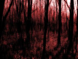 red forest by bushma