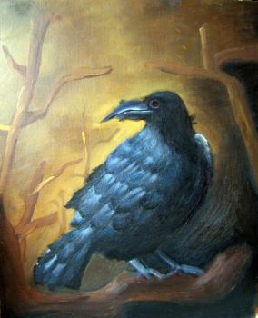 Corvus Corax by Siam by painters