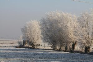 Ice landscape Diksmuide 11 by carinaD-stock