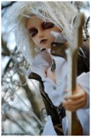 BJDs - Woof by anda-chan