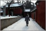 cold at the Shaolin temple by sevenths