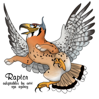 American Kestrel by rice-chex