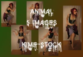 Animal 2 by kime-stock