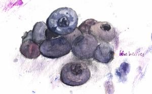 Blueberries. by my-ain-sel