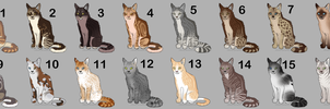 Cat Adoptables (OPEN!) by MaxOutLines