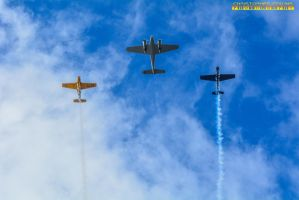 Concord d' Eligance Airplanes FlyoveMarch 13, 2016 by ENT2PRI9SE