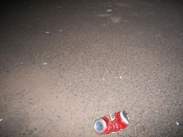 the can  is empty by roackamadea