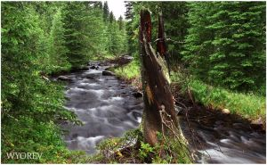The South Fork by wyorev