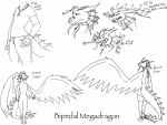 Megadragon's Bipedal Stance reference -sketch- by BlackDragon-Studios