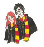 Harry and Ginny by quintessence424