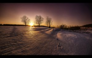 Winter scenery... 18 by PawelJG