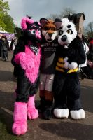Pinky, freckles and Fray by FurryFursuitMaker