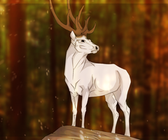 White Deer by SpiritOfBlackComet