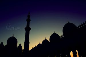 Zayed mosque silhouette by amirajuli
