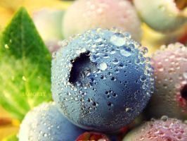 Berry Wet by iAmoret