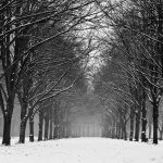 Winter wonderland by Ymntle-Aleoni