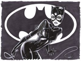 Pfeiffer_Catwoman_Commission by DennisBudd