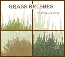 grass plant brushes by EveBlackwood