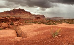 Capitol Reef NP by madrush08