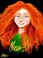 Merida the Brave by thecarefree