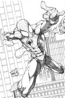 Spiderman 2013 pencils by hanzozuken