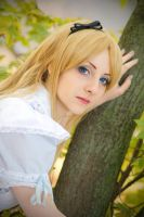 Down the Rabbit Hole - Alice in Wonderland by Bell-hime