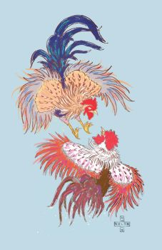 Fighting Roosters by nelos