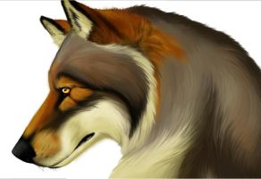 Winged Wolf color preview by CrimsonWolfSobo