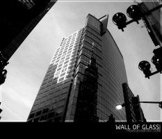 Wall of Glass by Prain