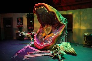 Audrey II stage 4 (open) by mostlymade
