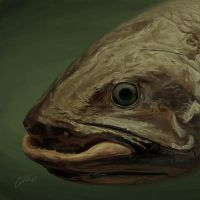 C is for Coelacanth - painting by Griffin-Fire