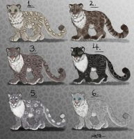 Male Snow Leopard Adopts - CLOSED by Nala15