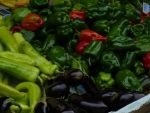 Vegetables In The Market by Luna-Caillean