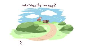 Box by DShou