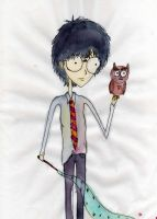Harry Potter by FreeSpiritedAnna